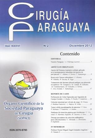 Revista Dic 2012-web