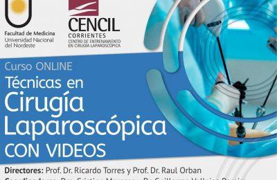 Curso ONLINE: Técnicas en cirugía laparoscópica con videos